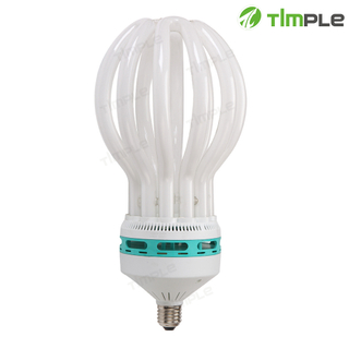6U Lotus Energy Saving Lamp